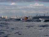 Surfing Sydney Harbour
