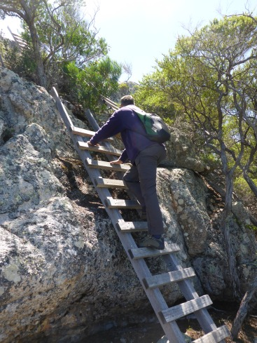 Climbing up to the Bluff