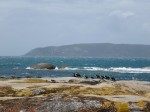 North east FlindersIsland
