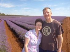 Loving the lavendar